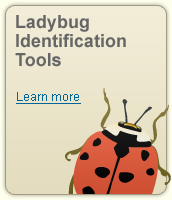 identification-tools-1083.php